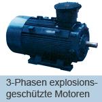 explosionsgeschuetztemotoren