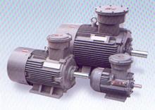 Explosiontsgeschützte Motoren