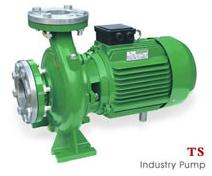 Industrie-Pumpe2